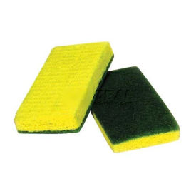 Green/Yellow Sponge
