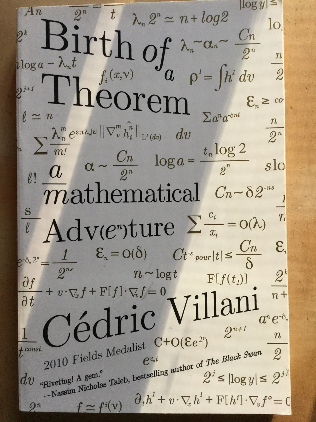 Birth of a Theorem: Mathematical Adventure