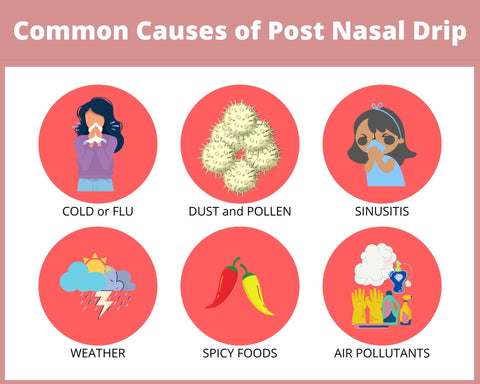 Common Causes For Post Nasal Drip allergies, pollen, cold, flu, air quality