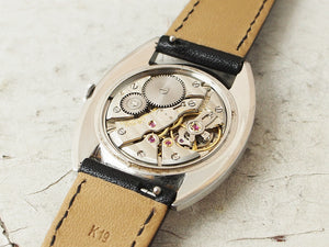International Watch Co.<2005-2989>