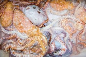 octopus from fish market in Italy photo for printing