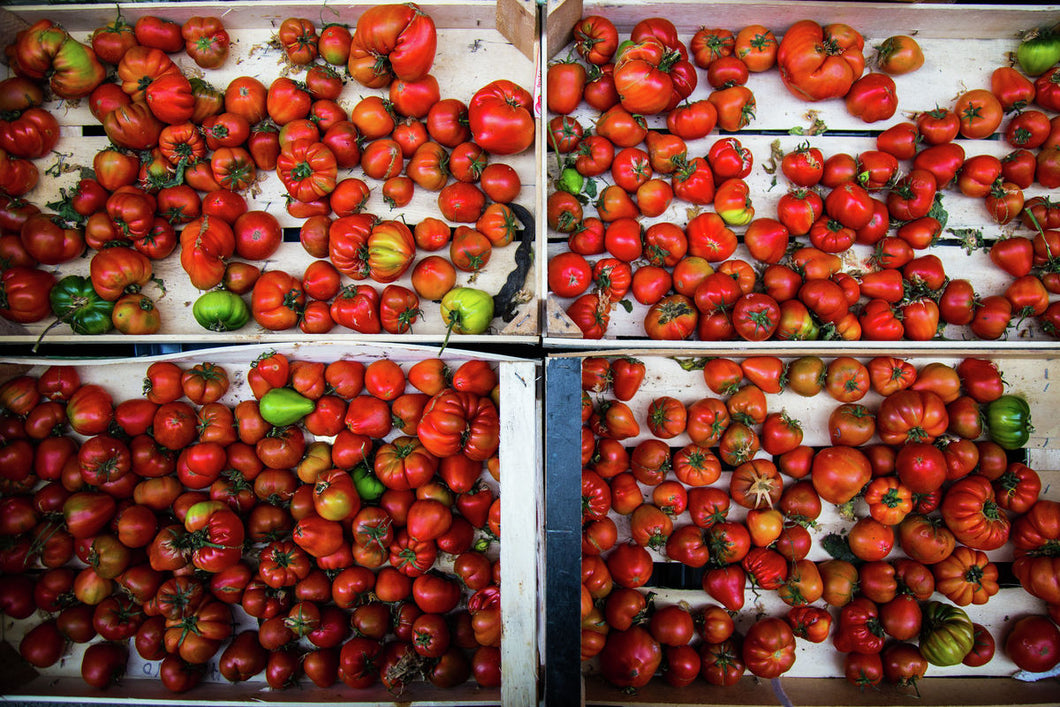 Fresh tomatoes from food market in Sicily photo for print