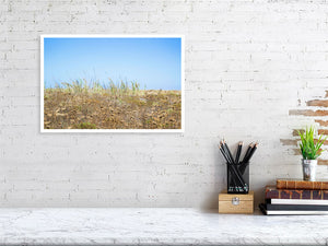 30.7 cm x 45.0 cm, 12.1 inches x 17.7 inches summer grass print for interior