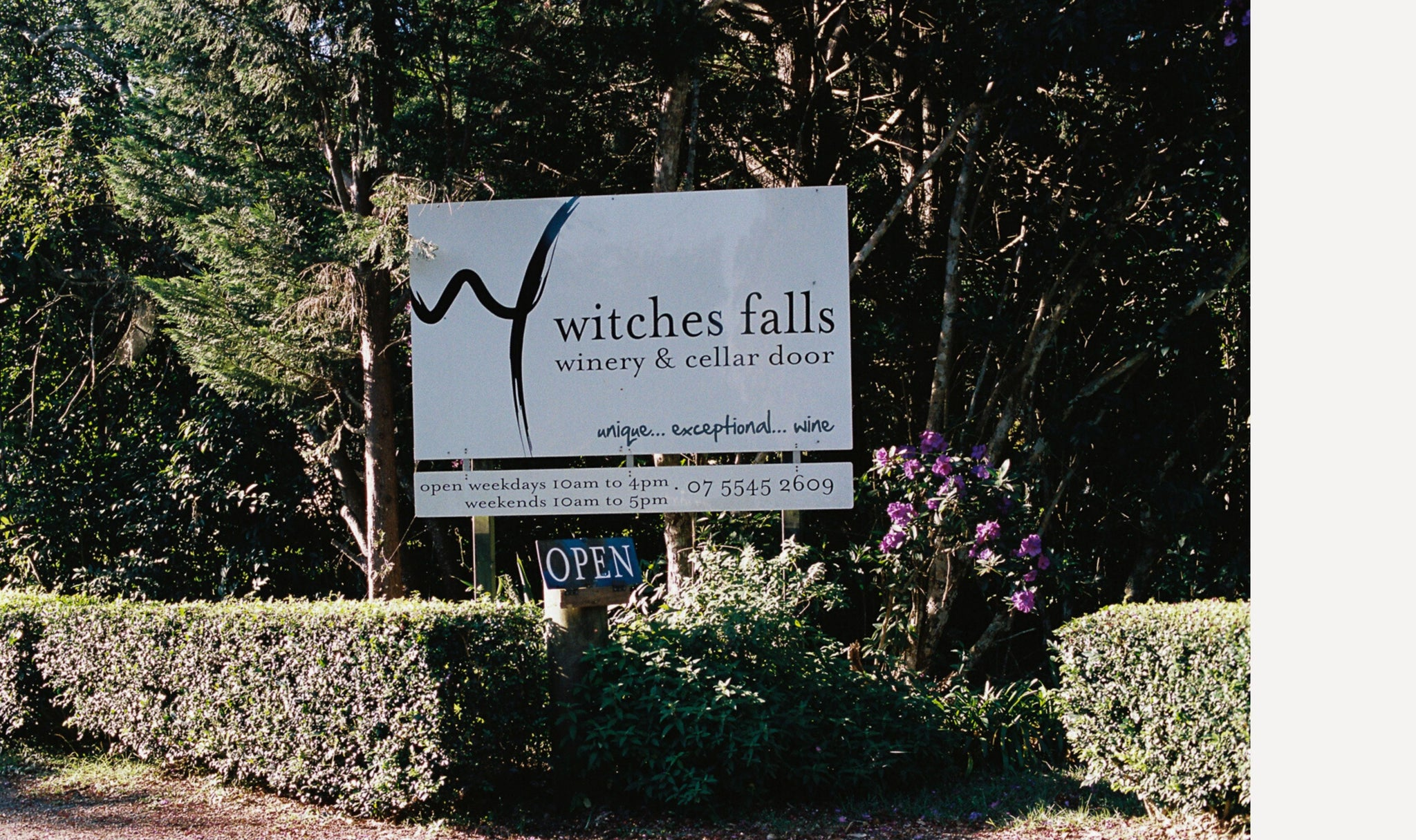 Witches Falls Winery Gold Coast Attraction