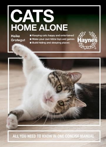 Cats Home Alone : All you need to know in one concise manual