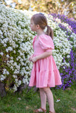 Periwinkle Dress <br> Digital Sewing Pattern