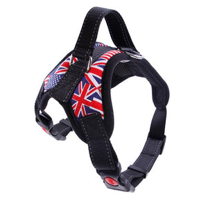 Pet Harness Leash Vest