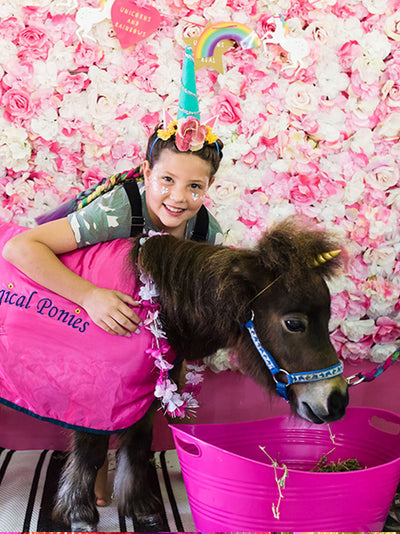 unicorn festival days school holiday events unicorn disco gold coast