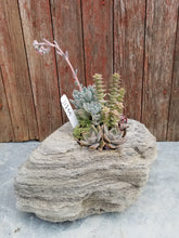 Load image into Gallery viewer, Large Faux Rock Succulent Planter