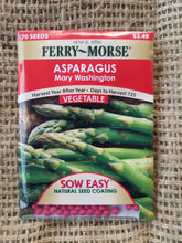 Load image into Gallery viewer, Asparagus - Mary Washington