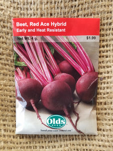 Beet - Red Ace Hybrid