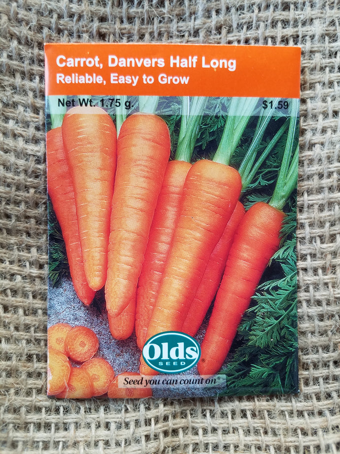 Carrot - Danver's Half Long
