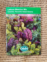 Load image into Gallery viewer, Lettuce - Mesclun Mix