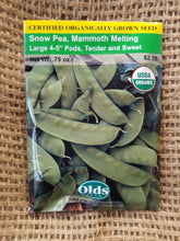 Load image into Gallery viewer, Snow Pea - Mammoth Melting