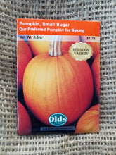 Load image into Gallery viewer, Pumpkin - Small Sugar