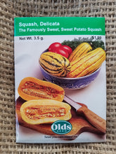 Load image into Gallery viewer, Squash - Delicata