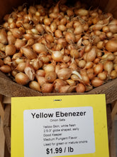 Load image into Gallery viewer, Ebenezer Onion Sets