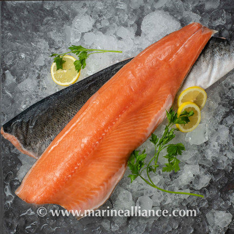 Frozen Whole Salmon Fillet (Skin On) 冰冻带皮三文鱼肉 1.2kg