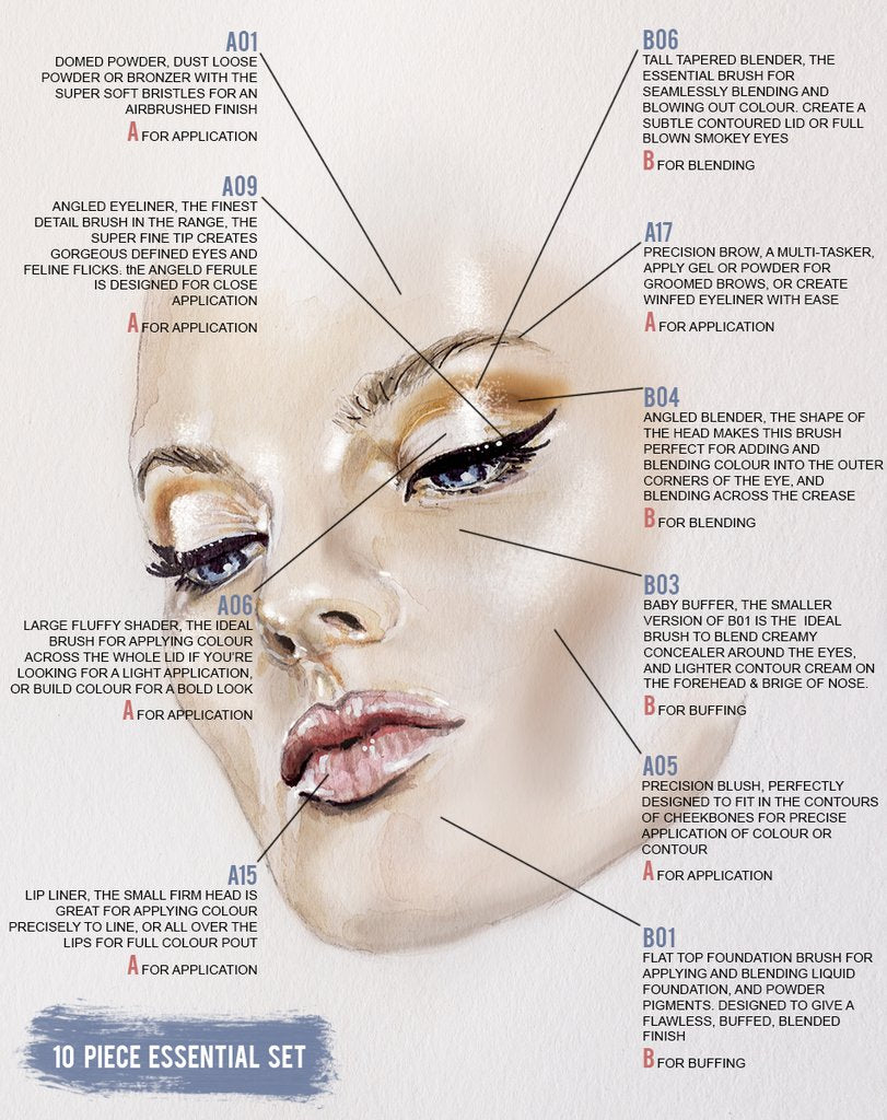 10 piece essential_WEB_copy_1024x1024?v\=1483012283 eye shadow diagram take your flat eyeshadow brush wiring diagram essig