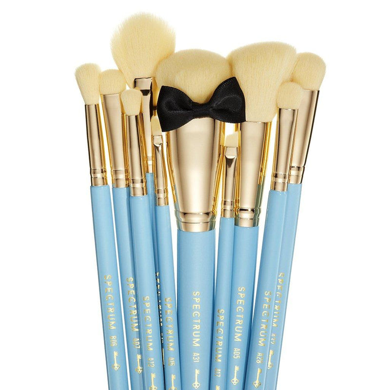 Alice in Wonderland 10 Piece Brush Set
