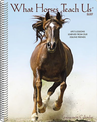 "Horse Engagement Calendar & Planner - 2019- 8.5 x 7"" - Spiral - 49 pages -  What Horses Teach Us"