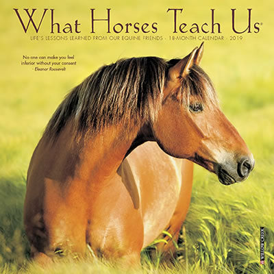 "Life Lessons From Horses - 2019 Mini Calendar - 7 x 7"" - Horse quotes - What Horses Teach Us"