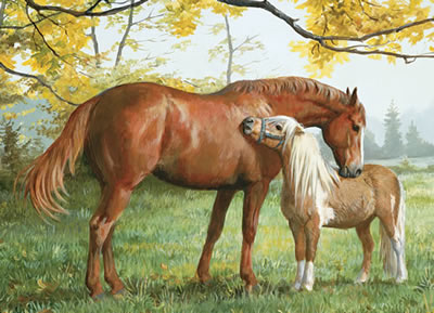 "A Little Higher, Please - Horse & Pony - 1000 Piece Puzzle - 26.75"" X 19.25"" - Georgia Horseback"