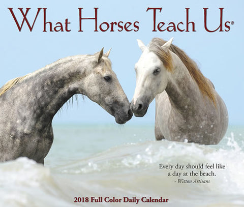 What Horses Teach US  - Daily Desk Calendar - 2018 - 4.25 x 5.25""