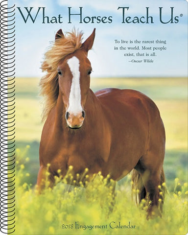 "Horse Engagement Calendar & Planner - 2018 - 8.5 x 7"" - Spiral - 49 pages -  What Horses Teach Us"