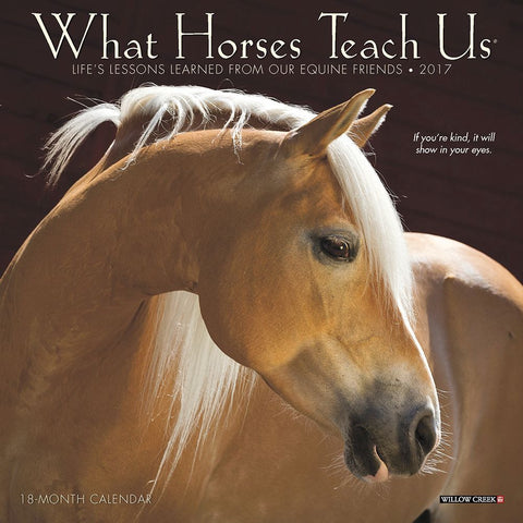 "Life Lessons From Horses - 2018 Mini Calendar - 7 x 7"" - Horse quotes - What Horses Teach Us"