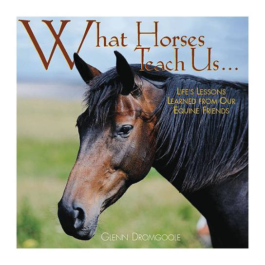 "Life Lessons From Horses -Photo Gift Book - 85 gorgeous color photographs - 5.5 x 5.5"" - What Horses Teach Us"