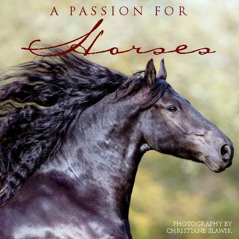 "A Passion for Horses -Photo Gift Book - 5"" x 5"" - 85 gorgeous color equine photographs"