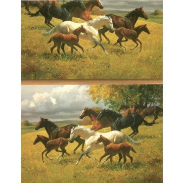 Equestrian Gift Supplies - Horse Lovers Gift Wrap Paper ~ 6Ft Sheet - Georgia Horseback