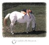 "Life Lessons From Horses -Photo Gift Book - 85 gorgeous color photographs - 5.5 x 5.5"" - What Horses Teach Us - Georgia Horseback"