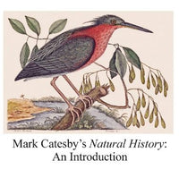 Mark Catesby's Natural History: An Introduction