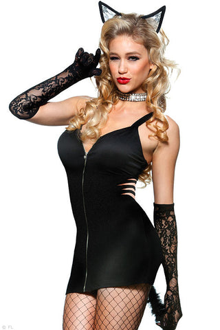 Naughty Kitty Costume for Women Role Play Wildcat Uniform