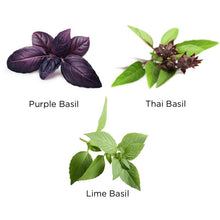 Load image into Gallery viewer, Exotic Basil Kit