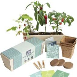 Mini Fruit & Vegetable Garden Kit