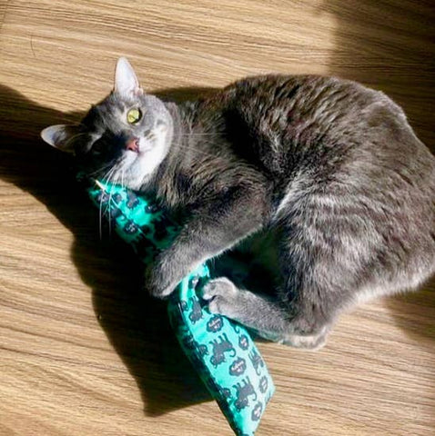 Kick-its Cat Toy with Crinkle