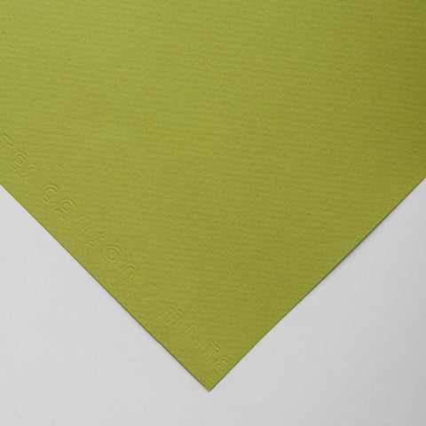 PASTEL Paper - 160gsm/500 x 650/Canson Tints - Light Green