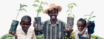 Bio Moringa Happy Family