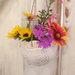 Small Vases perfect for hanging on a door knob!