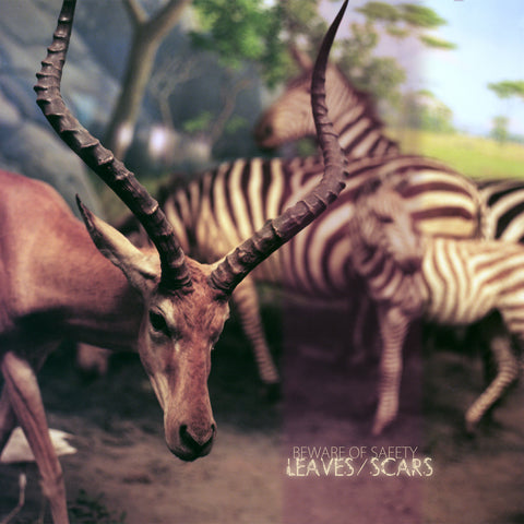 Beware of Safety • Leaves/Scars [CD]
