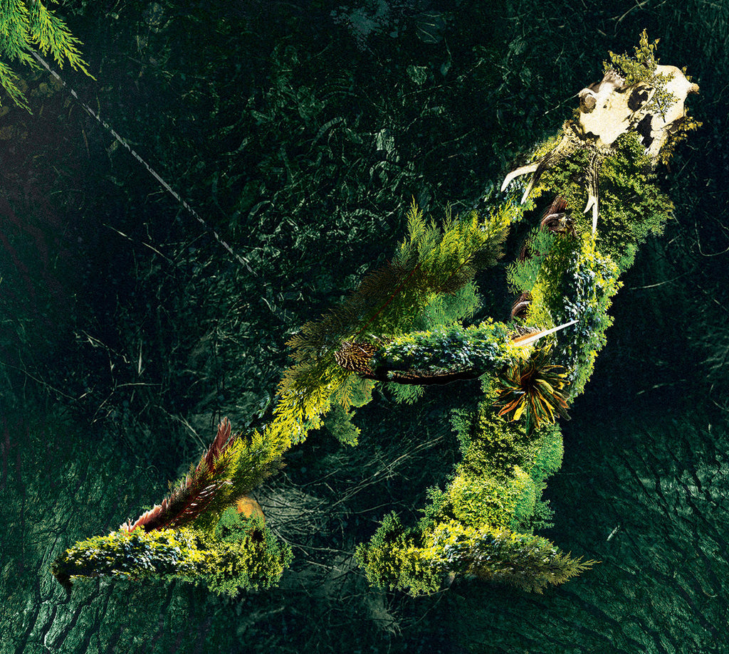 Valerinne • Arborescent [CD]
