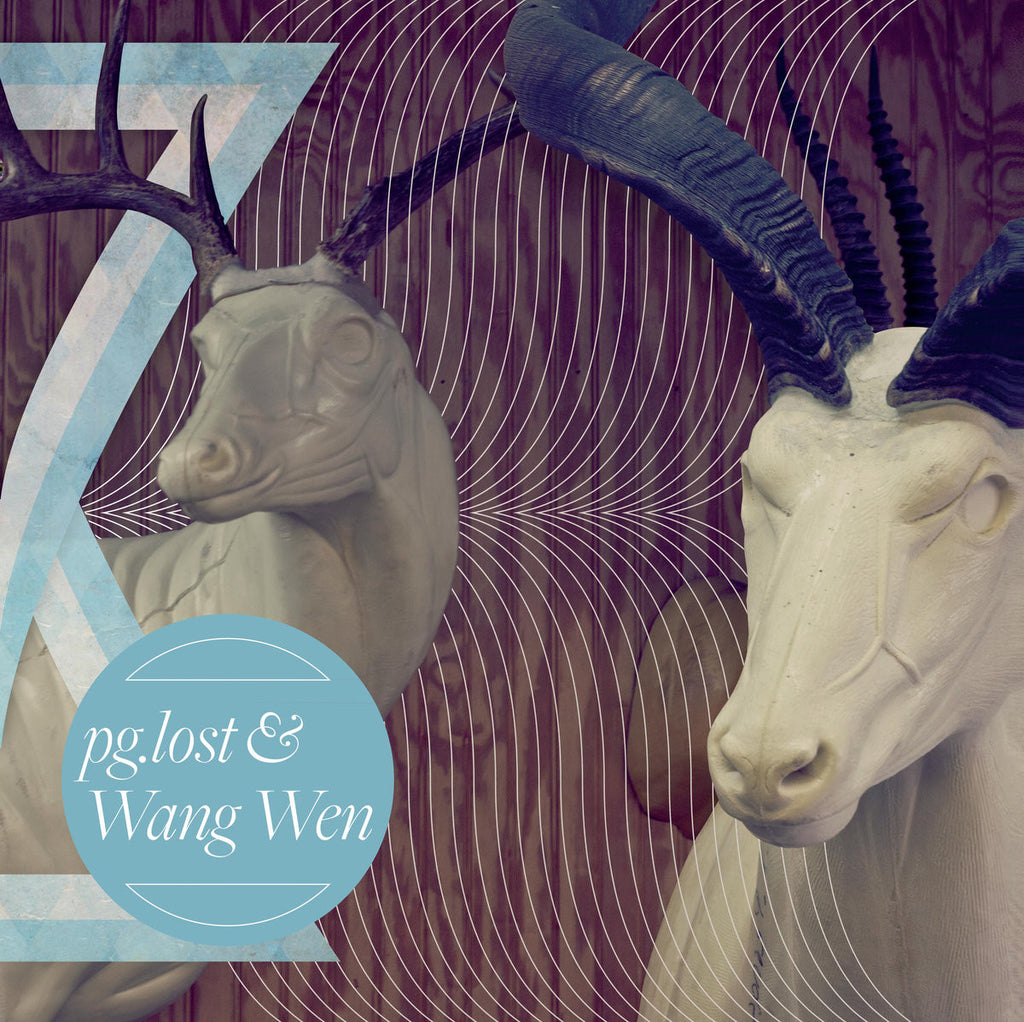 pg.lost / Wang Wen • Split [LP]