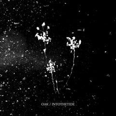 Oak / Into The Tide • Split [LP]