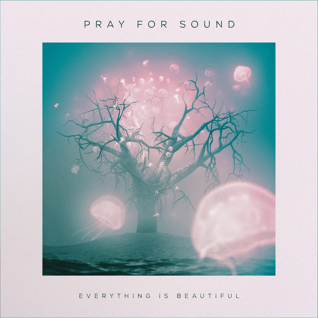 Pray For Sound • Everything Is Beautiful [CD]