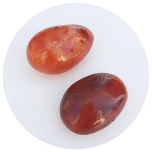 Open image in slideshow, Carnelian Palm