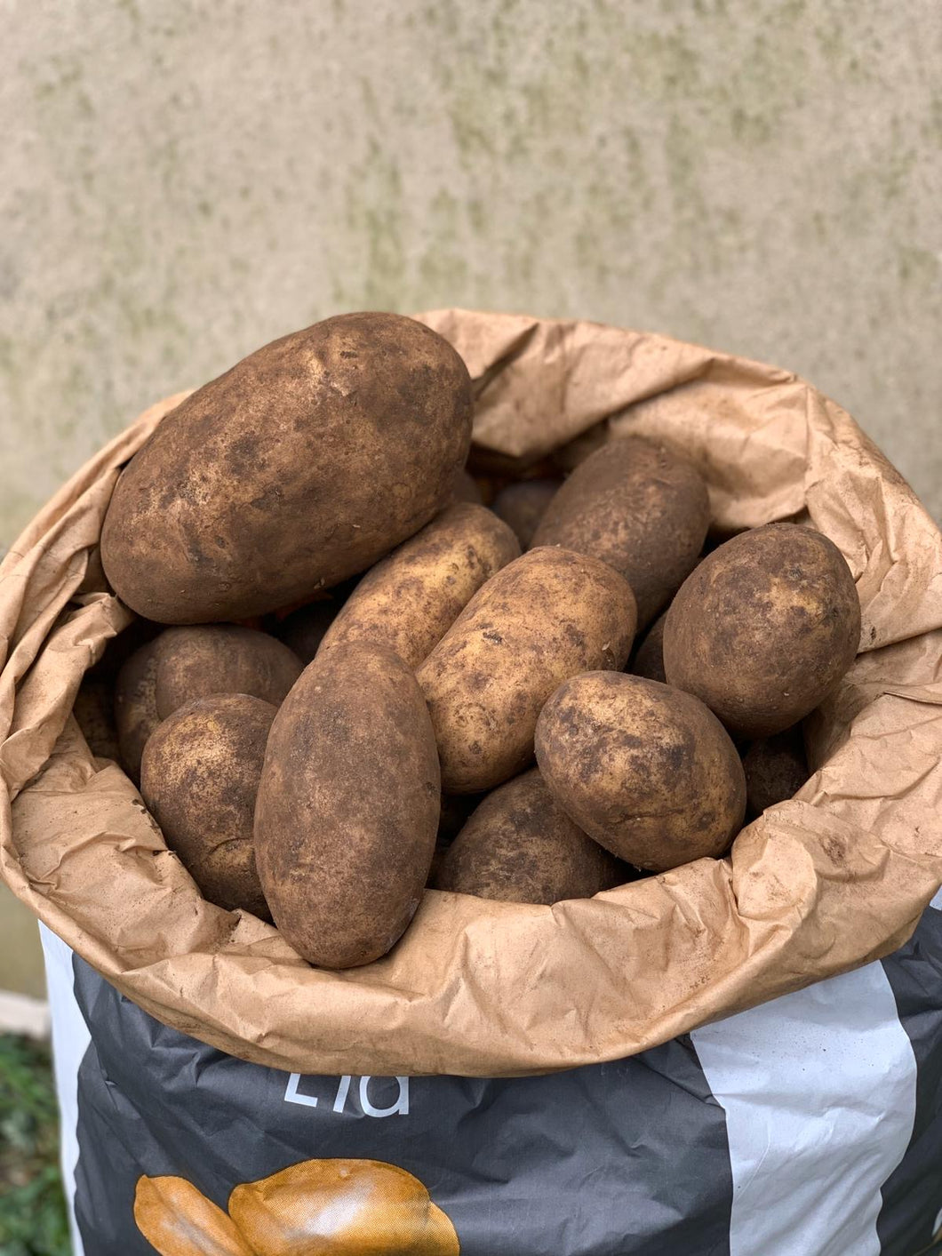 20kg Sack of Sagitta Potatoes