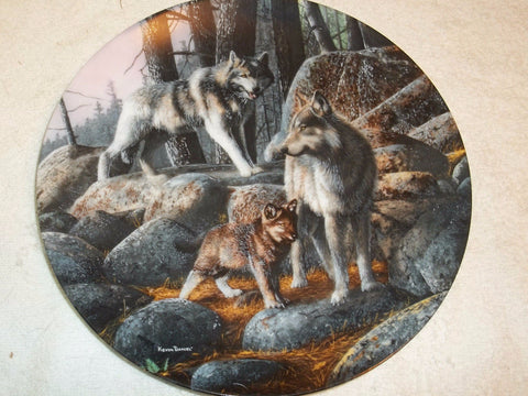 A New Future Collector's Plate #4116C of Call Of The Wilderness at Bradford Exchange CP049